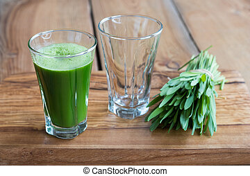 Green barley grass shot in a glass, with blades of young...