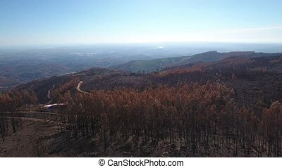 Aerial. Rise drone over the burnt forest. Portugal...