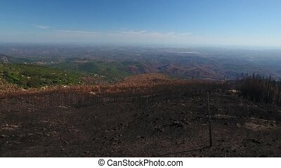 Aerial. Disaster after the fire, video of the drone....