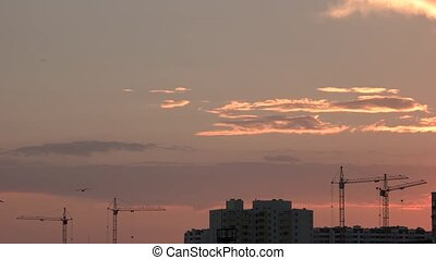 Buildings and cranes, sunset background.