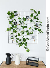 Ivy on trellis, photographs, and decorations - Ivy on...