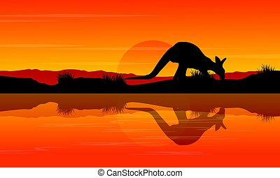 Silhouette kangaroo on the river landscape