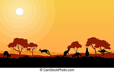 Beauty kangaroo on park scenery silhouettes