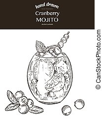 Cranberry mojito. Vector sketch illustration of cocktails....