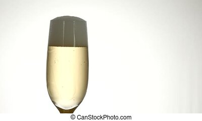 champagne glass isolated - Glass of champagne isolated on...