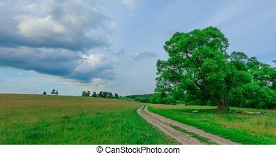 dirt road in a field against a blue sky