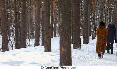 Winter walking.