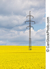naturaleza, autobuses, amarillo, alto, campo, voltaje, tecnología, violación
