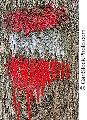 red white red mark - on a tree, the red-white-red flag is...