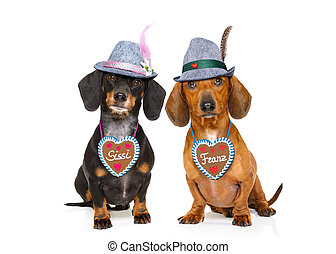 bavarian beer dachshund sausage dogs , couple of two -...