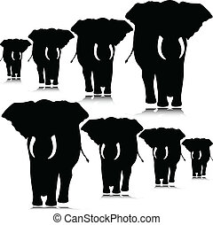 elephant move illustration
