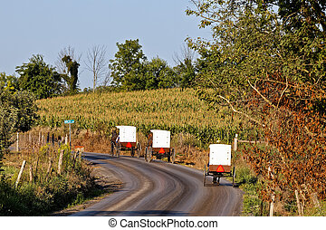 Amish Carriages in Rural Pennsylvania