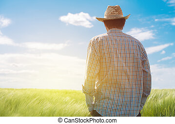 Farmer looking at the sun on the horizon