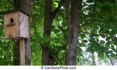 the little birdhouse hanging on a tree,on a background of green leaves