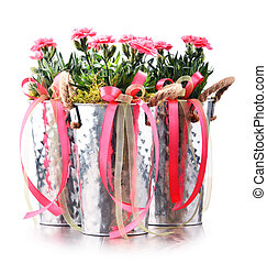 Composition with bouquet of carnations.