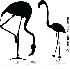 flamingo vector silhouettes