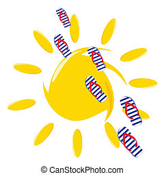 flip flop and sun on white background illustration