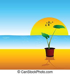flower on the beach vector