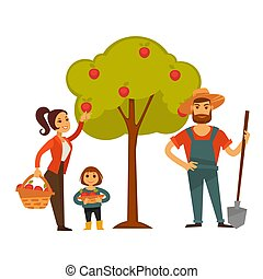 People gather fruit harvest vector farm agriculture - Woman...