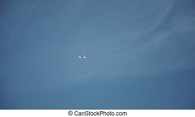 Small Airplane Flying in the Sky