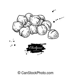 Chickpeas hand drawn vector illustration. Isolated Vegetable...