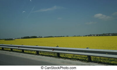 Aerial Shot of Grey Car Driving on Road Next to Field of Yellow Flowers and Farmland