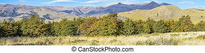 Patagonia Andes Mountain, El Chalten, Argentina - Landscape...