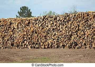 Huge stack of logs for lumber at a sawmill