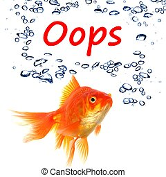 oops word and goldfish showing accident failure or danger...