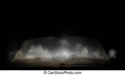 Book in the fog. Mysterious smoke enveloped the book -...