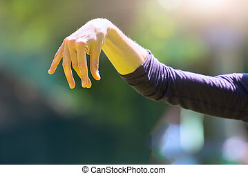 Practice of Tai Chi Chuan in outdoor. Detail of hand...