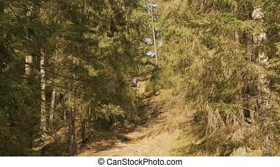 Girl hikes in the summer forest - flying camera shot.