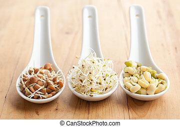 macrobiotic food - photo shot of macrobiotic food