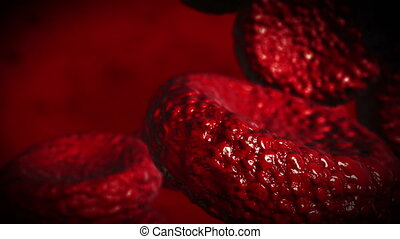 realistic blood cells - 4K animation. - Beautiful Flying...