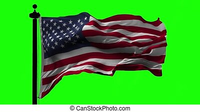 Flag of USA on Green