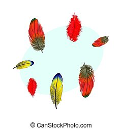 Hand drawn set of various colorful bird feathers, vector illustration