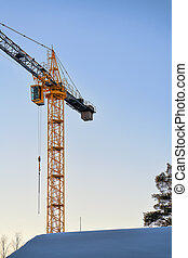 Crane at sunset in Lapland, Finland, on Arctic Circle in...