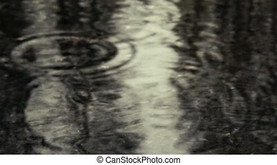 Drops in a puddle on the road - Raindrops in a puddle on the...