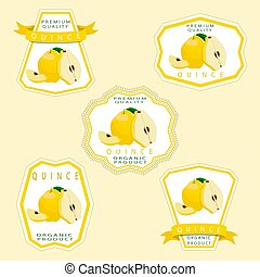 The quince - Vector illustration logo for whole ripe yellow...