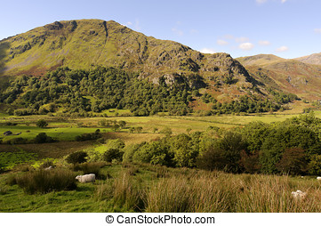 Gallt y Wenallt from Afon Glaslyn - View of Gallt y Wenallt...