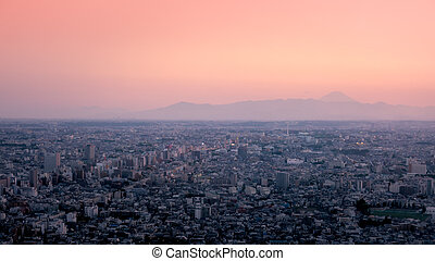 Metropolis of Tokyo city with a view of Fuji San in the...