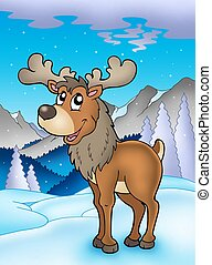 Winter theme with reindeer - color illustration