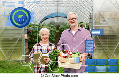 senior couple with box of vegetables on farm - organic...