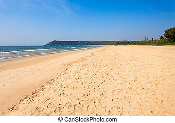 Beach in Goa, India - Beauty lonely beach with yellow sand...
