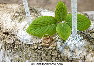 Wedding rings on a log with green leaves and weding glass. -...