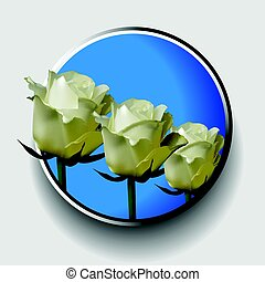 Trio of white roses over blue metallic border