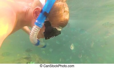 A child bathes in the sea with a fish in the sun. Scuba diving in masks. Tropical island