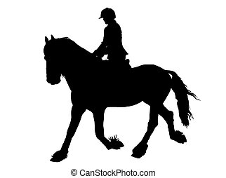 Silhouette of Female Rider on Lipizzaner horse - Silhouette...