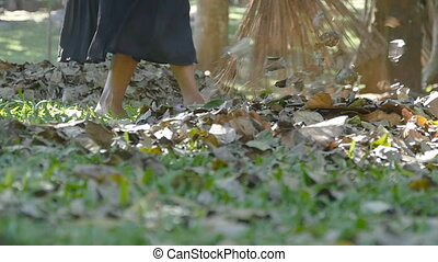 Female indian janitor in the park sweeps the leaves rakes...
