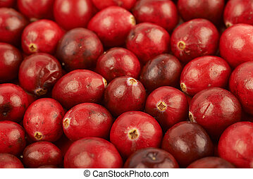 Surface coated with the cranberries - Surface coated with...